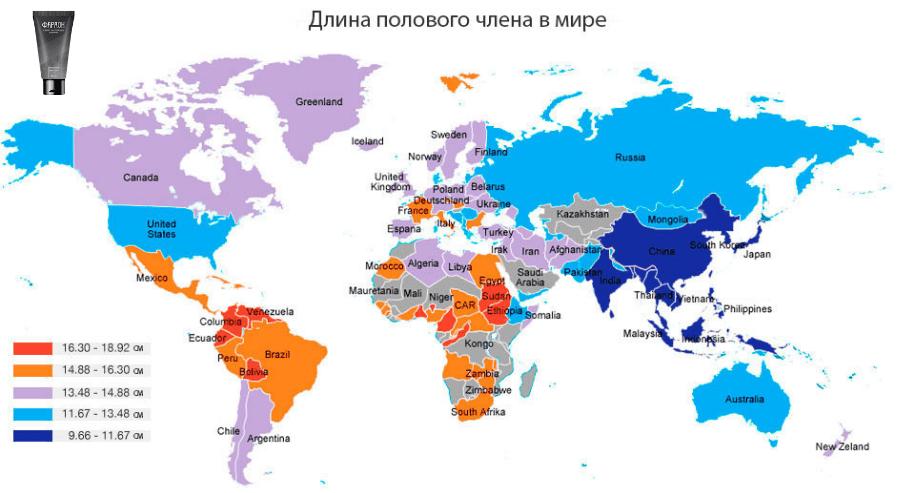 карта распределения размеров полового члена по странам